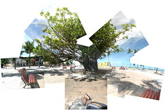 Baob (hiago) Tags: panorama composite canon colagem joiner olinda canonpowershotg9