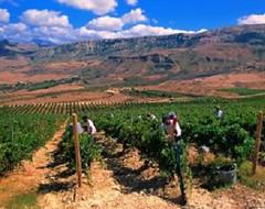 Misión comercial vitivinícola siciliana en Salta