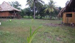 Pine & Bamboo Dormitories (El Coco Loco) Tags: nicaragua dormitory cabanas elcocoloco