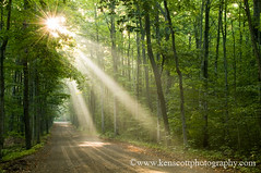 KAScott_20080829_9482b (Ken Scott) Tags: usa fog rural sunrise woods michigan dirtroad sunbeam leelanau kenscottphotography kenscottphotographycom