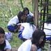 School Girls Upkeeping the Garden