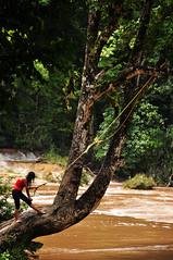 Aqua Azul (5) (Nikole Bouchard) Tags: landscape mexico waterfall jungle chiapas aquaazul