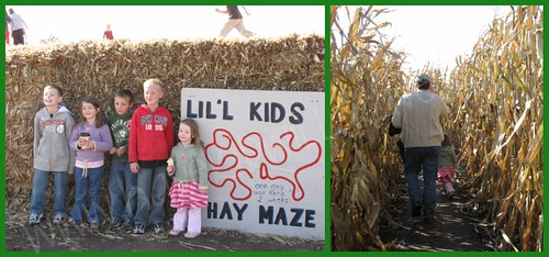 Mazes at Center Grove Orchard, Cambridge, Iowa