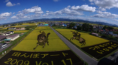 (TRUE 2 DEATH) Tags: autostitch horse art nature field japan clouds landscape rice general pano panoramic fromabove aomori fields napoleon  stitched autostitched aomoriken autopan