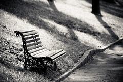 Loneliness (Conrado Tramontini (Conras)) Tags: park parque history bench loneliness peace curves banco paz tranquilidade descanso solido