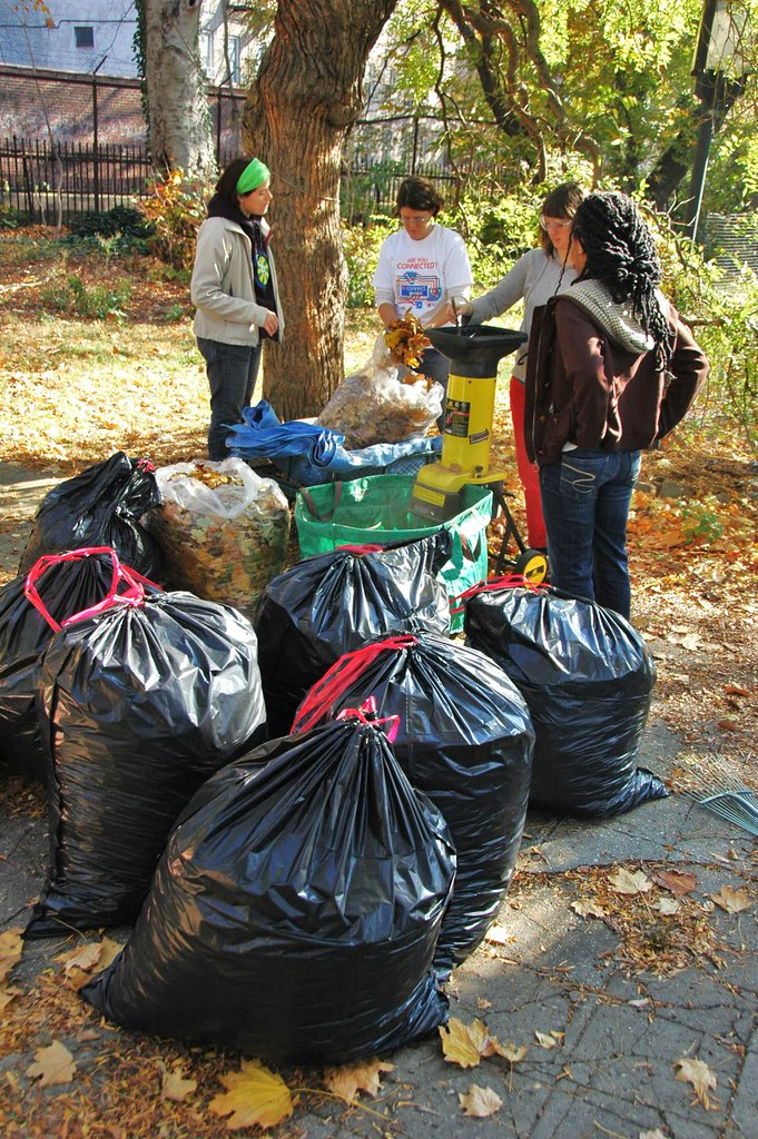 Shredding Leaves at the Flatbush CommUNITY Garden (photo by Flatbush Gardener)