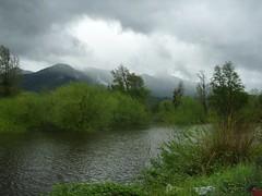 Bei Currarehue, Überschwemmung (sopran) Tags: chile kleiner süden currarehue