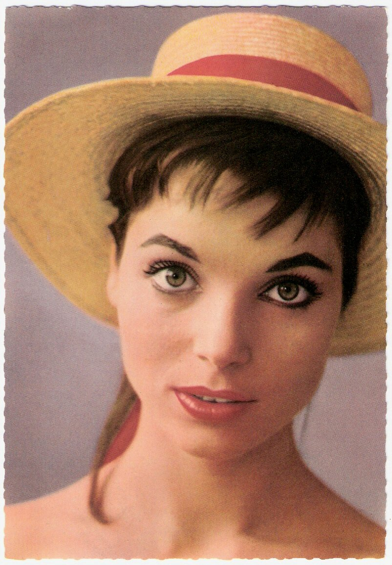 Elsa Martinelli. go back