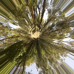 green planet (regina dementes) Tags: panorama photoshoppery