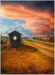Someone ? (Jean-Michel Priaux) Tags: wood autumn light shadow vacation sky cloud house holiday france art home window illustration night photoshop painting landscape construction nikon place magic small dream peinture dreaming strasbourg alsace chalet paysage maison fentre dreamland tale anotherworld smallhouse littlehouse habitation clairage neuhof conte mattepainting magique d90 maisonnette rservenaturelle priaux villgiature rohrschollen vanagram