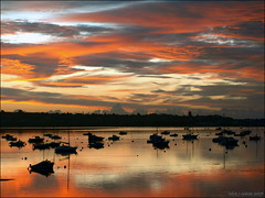 Exe Estuary dawn (ExeDave) Tags: uk morning england sky clouds river skyscape landscape boats dawn coast october estuary coastal devon gb yachts 2009 exmouth waterscape exe starcross eastdevon sunrsie exeestuary teignbridge abigfave colorphotoaward superaplus aplusphoto diamondclassphotographer flickrdiamond moreorlessastaken pa238332