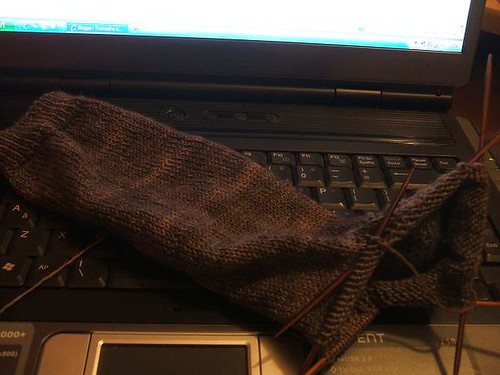 Stringybark sock