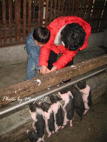 2009 12 20_33宜農牧場.JPG