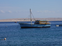 fishing dhow red sea hugharda (pfrank1) Tags: perahu dhow sloop felucca boutre