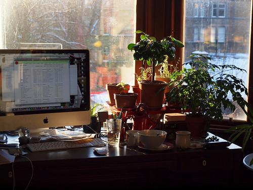 YIP 5 - Jan 5th - my desk