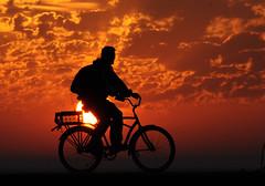 2011 Sunrise Bicyclist (DrLensCap) Tags: chicago bird robert sunrise point pier illinois il bicyclist montrose kramer sanctuary wow1 wow2 wow3 wow4 fishook wow5 wowhalloffame colorphotoaward flickrdiamond platinumheartaward bestcapturesaoi elitegalleryaoi mygearandme mygearandmepremium mygearandmebronze mygearandmesilver mygearandmegold mygearandmeplatinum mygearandmediamond dblringexcellence artistoftheyearlevel3 artistoftheyearlevel4 aboveandbeyondlevel4 wowfameofhall aboveandbeyondlevel1 artistoftheyearlevel5 artistoftheyearlevel7 artistoftheyearlevel6 aboveandbeyondlevel2 aboveandbeyondlevel3 flickrsfinestimages1 flickrsfinestimages2 flickrsfinestimages3 infinitexposure