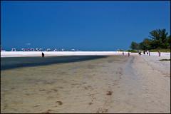 Fort DeSoto North Beach (Tom Gill.) Tags: beach gulfofmexico sand florida northbeach tidalpool fortdesoto pinellascounty tierraverde
