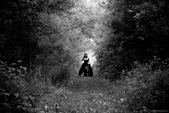 The path (Mike Wood Photography) Tags: trees light bw leaves fairytale standing forest walking eos path arr gown surrounded allrightsreserved mikewood 400d mywinners aplusphoto mwpfash mikewoodphotographycom mikewoodphotography misslizzz