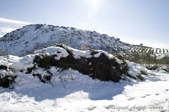 IMG_8071 (Miguel Angel Mora (GSi_PoweR)) Tags: espaa snow andaluca carretera nieve nevada sunday bosque granada costadelsol domingo maroma mlaga mountainroad meteorologa axarqua puertomontaa zafarraya sierraalmijara caosalcaiceria