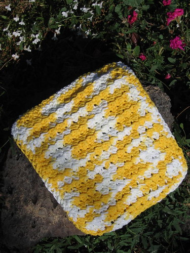 Another Dish Cloth