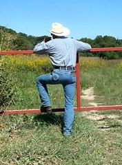 02 WS contemplate'n walkabout in fields (wranglerswimmer) Tags: cowboy wranglerjeans hotjeans cowboygear wranglercowboy