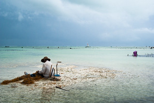 Le pêcheur de Zanzibar 3