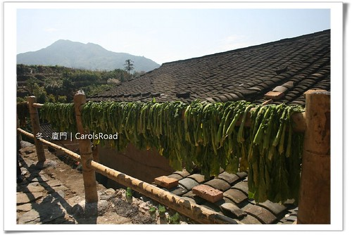 20090208_Xiamen_276