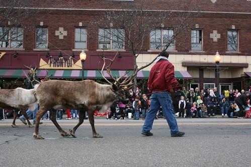 Holiday Parade 091