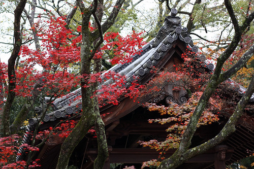 Shrine in Kyoto