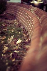 . : . . `  )) (ArtFromM(elia)) Tags: brick wall fence sortof justanother sdof brickbokeh ithinkitcounts