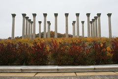 IMG_5026 (avsfan1321) Tags: autumn usa fall dc washington unitedstates fallcolors unitedstatesofamerica columns arboretum column nationalarboretum usnationalarboretum capitalcolumns