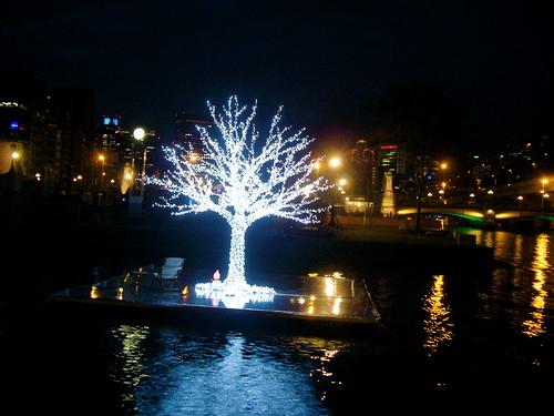 OSAKA光のルネサンス バラ園 2009.12.13