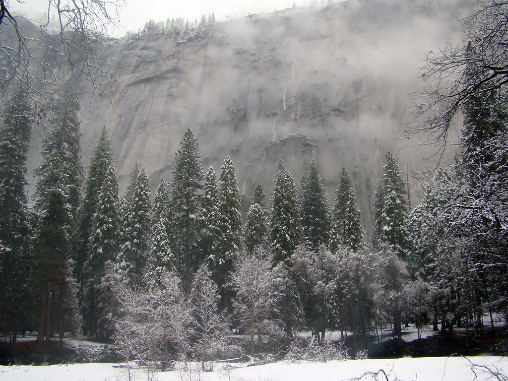 DSC04085 Yosemite mist
