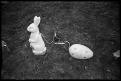 Electric Easter (Voxphoto) Tags: blackandwhite bw bunny easter trix egg lawn annarbor decor jazz207 aristapremium400 cobracrystal