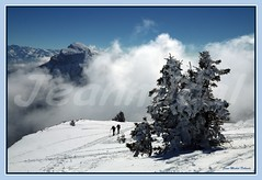 """ Unis dans l ' effort ..."" (jeanmical) Tags: people mountain snow france nature montagne landscape hiking hiver summit neige paysage snowshoes soe chamechaude isre charmantsom massifdelachartreuse platinumphoto aplusphoto coldeporte diamondclassphotographer flickrdiamond citritgroup platinumheartaward betterthangood goldstaraward randonneraquettes artofimages platinumpeaceaward"