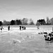 "Pondhockey 2017 • <a style=""font-size:0.8em;"" href=""http://www.flickr.com/photos/44975520@N03/32190311114/"" target=""_blank"">View on Flickr</a>"