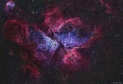The Carina Nebula (NGC 3372) (AstroSocSA) Tags: carina nebula emission supernovaremnant dark sagittarius 49