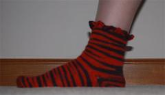 tiger-sock 1 (roocmc) Tags: sock tiger safari kal