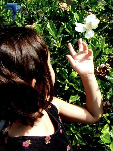 child with gardenia
