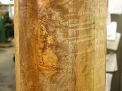 Mango Column - Figure