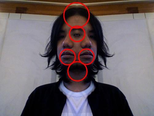 emushi-2face.jpg_haarcascade_mcs_mouth