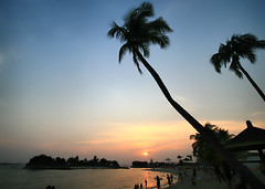 Sentosa Island Sunset, Singapore (` Toshio ') Tags: ocean trees sunset people woman playing man men beach water silhouette clouds children island bay harbor sand women singapore paradise play pacific sandy silhouettes palm palmtrees sentosa sentosaisland palmleaves toshio