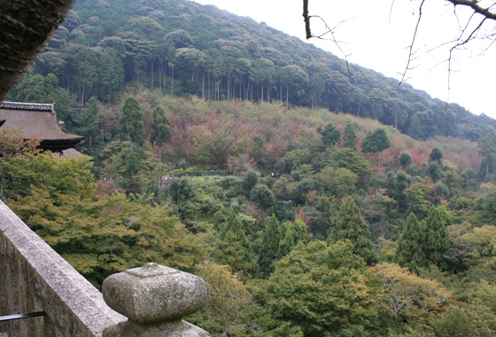 Kiyomizu Dera - amazing views