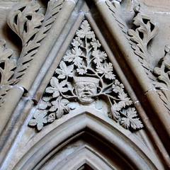 Green Man (tina negus) Tags: sculpture church cathedral carving medieval nottinghamshire chapterhouse greenman southwellminster