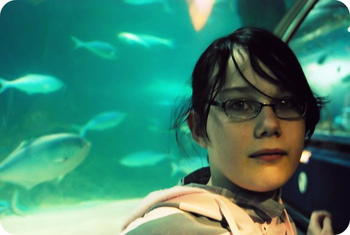 With the Fishes