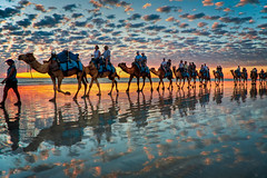 Camels at Sunset,  Cable Beach W.A (Symoto) Tags: sunset australia camel outback westernaustralia broome cloudscapes cablebeach roebuckbay kartpostal colorphotoaward overtheexcellence