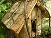 Bird House (boisebluebird) Tags: boise boisebluebirdcom httpwwwboisebluebirdcom boiselandscaping boisegardener