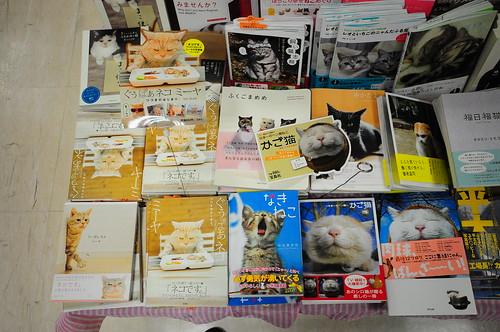 Libros de gatos class=
