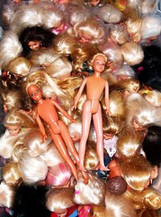 American Beauty Barbie Remix