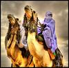 Knights of the Desert ! (Bashar Shglila) Tags: world white sahara festival proud photography gallery desert photos top sony best most worlds popular libya camels dsc camello touareg tuareg صور libyan صورة libyen صحراء ليبيا líbia مهرجان libië daraj mahari درج libiya sahran السياحي impressedbeauty twareg liviya toareg libija المهرجان либия hx1 توارق dschx1 ливия լիբիա ลิเบีย lībija либија lìbǐyà libja líbya liibüa livýi λιβύη ايموهاغ هقار